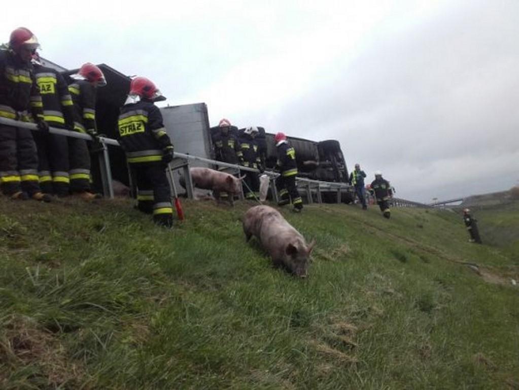 Poważny wypadek samochodu ciężarowego na A2. Trudna akcja służb trwała ponad 10 godzin.