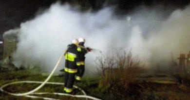 Spłonął budynek gospodarczy. Strażacy uratowali, zamkniętego wkojcu, przestraszonego psa