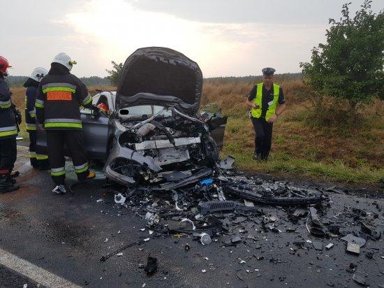 Tragiczny wypadek na Drodze Wojewódzkiej. Nie żyje najmłodszy uczestnik tego wypadku – 10 letni chłopiec poniósł śmierć na miejscu.
