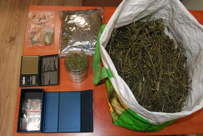 21-latek przypadkowo na polu napotkał rosnące krzewy marihuany, postanowił zrobić z nich pożytek