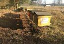 Bez pszczół nie ma przyszłości. Wielkopolska wie, jak im pomagać!